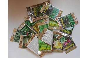 pack of 20 tree seeds